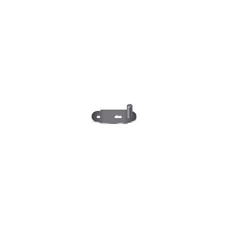 VSP0046323