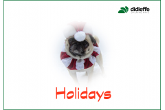 December closing days and Christmas holidays
